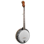 Gold Tone BG-250FW Bluegrass Banjo with Brass Tone Ring
